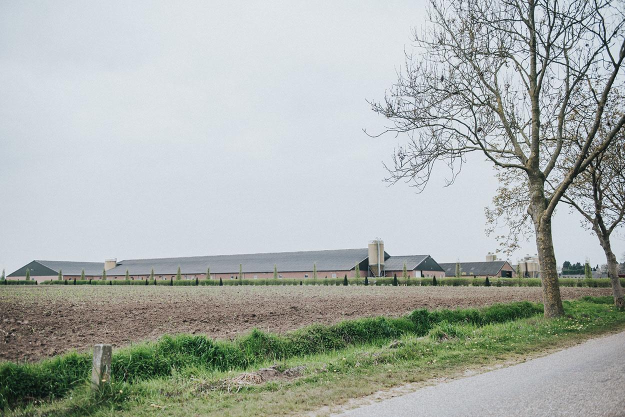 Familie Beerens Boeren van Nederweert