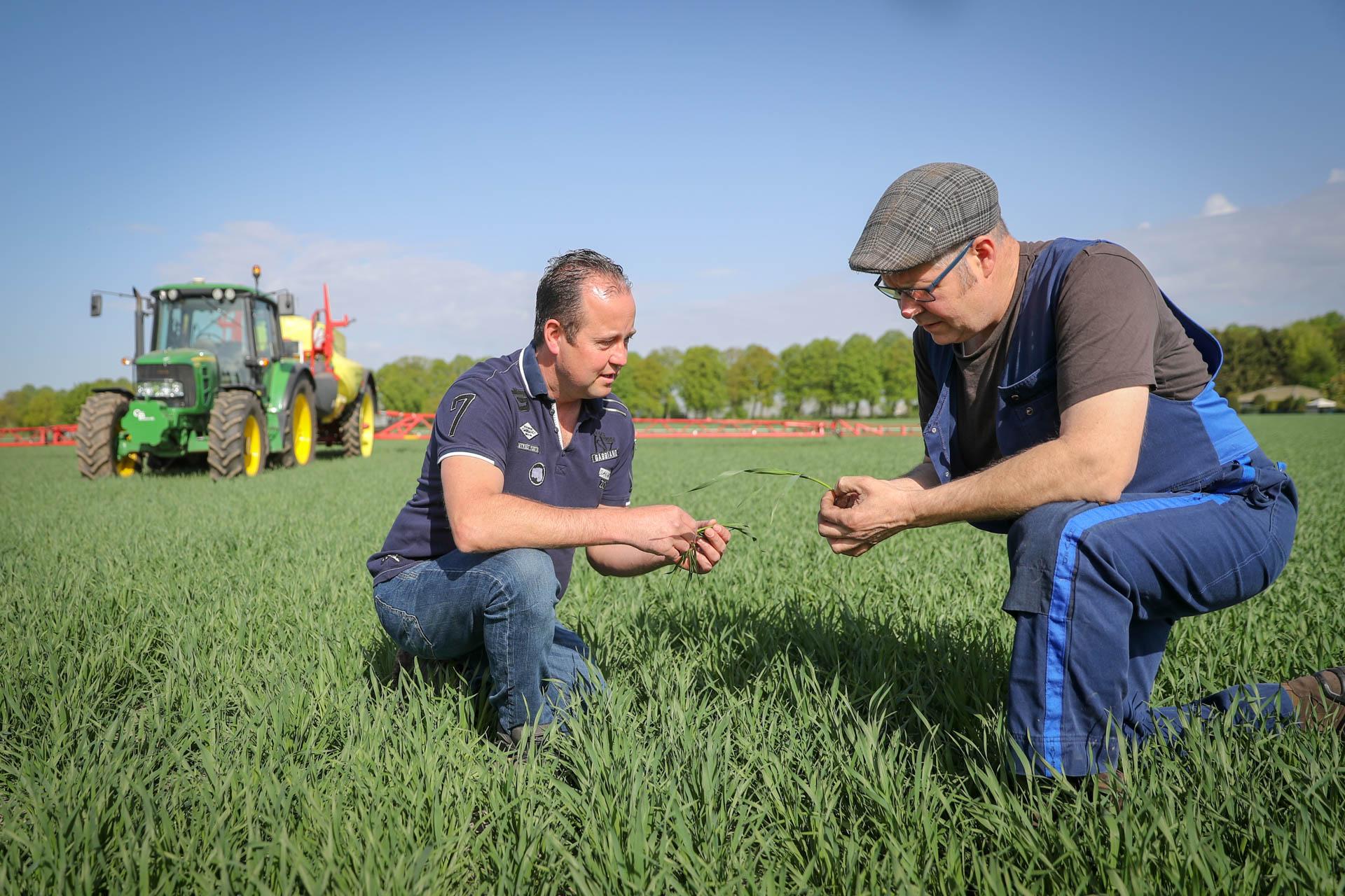 Boeren van Nederweert gewasbescherming
